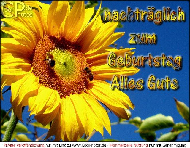 Jauja 40 Mariele 31 Annika 20 Germanwings 16 Seite 2