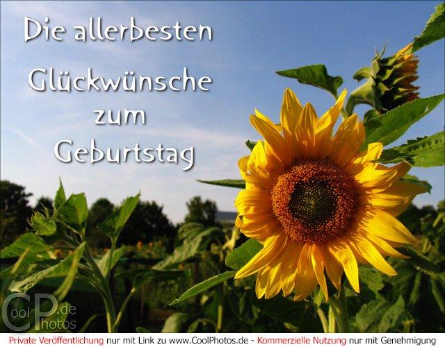 Gl ckw nsche zum geburtstag online versenden geburtstagskarten w nsche geburtstag - Geburtstagskarten kostenlos versenden ...