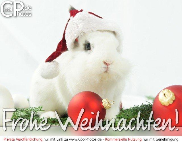 Gru karten weihnachtskarten frohe - Weihnachtskarten kostenlos verschicken ...