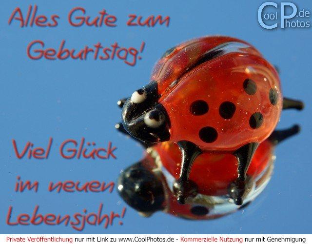 640 x 500 jpeg 59kB, Geburtstagsw Nsche Zum 12 Geburtstag | New ...