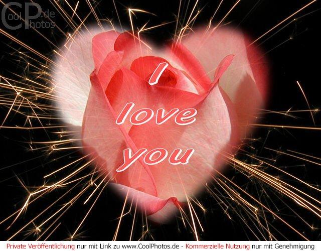 Bilder Ich Liebe Dich Kostenlos Ich Liebe Dich Bilder