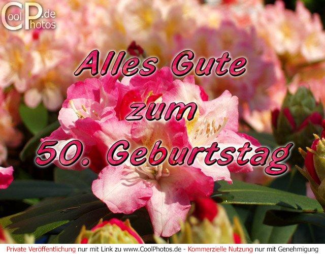 Coolphotos De Grusskarten Alles Gute Zum 50 Geburtstag