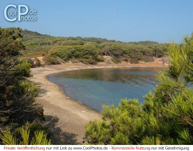 Blick zwischen Bäumen hindurch auf eine einsame Bucht mit Sandstrand