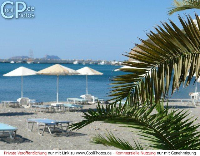 Blick vorbei an einer Palme über Liegestühle und Sonnenschirme am Strand über das Meer im Hintergrund