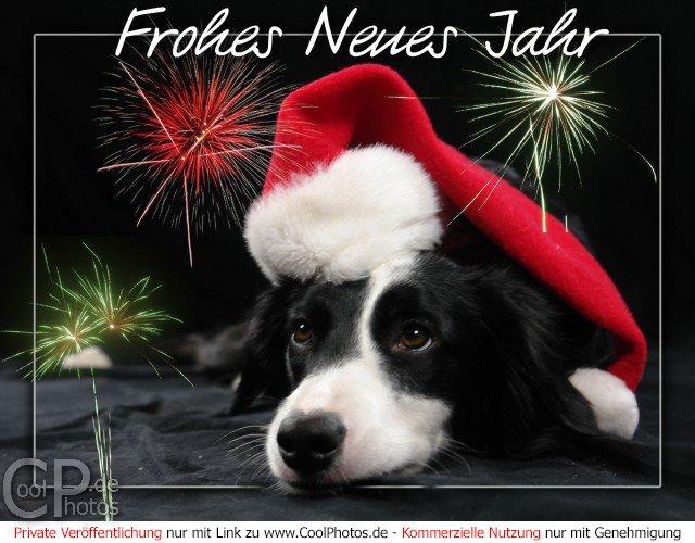 CoolPhotos.de - Grußkarten - Silvester & Neujahrskarten - Frohes ...