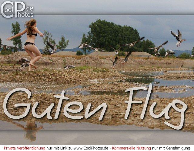 Coolphotosde Grußkarten Schönen Urlaub Gute Reise Guten Flug