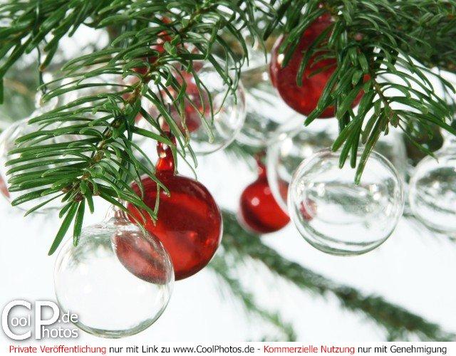 Weihnachtsbilder Tannenzweig.Coolphotos De Grußkarten Weihnachtsbilder