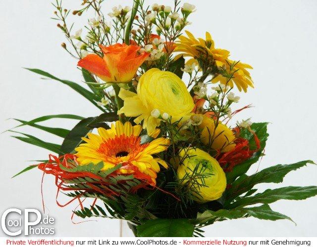 Blumenstrauss vor weißem Hintergrund
