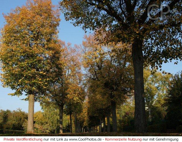 CoolPhotosde  Fotos  Herbst  Herbstlandschaften