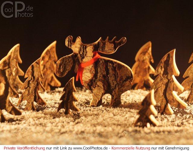 Weihnachtsbilder Elch.Coolphotos De Grußkarten Weihnachtsbilder