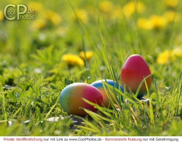 CoolPhotosde Fotos Sonstiges Osterbilder