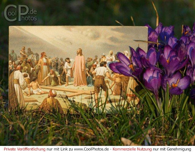coolphotosde  grußkarten  religiöse osterkarten