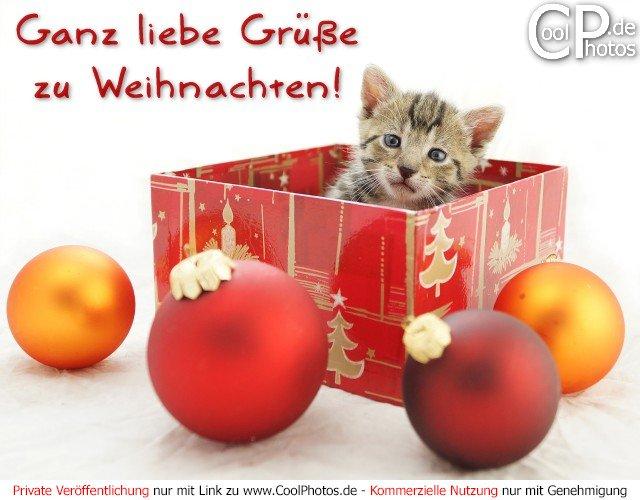 CoolPhotos.de - Weihnachtskarten - Ganz liebe Grüße zu Weihnachten!