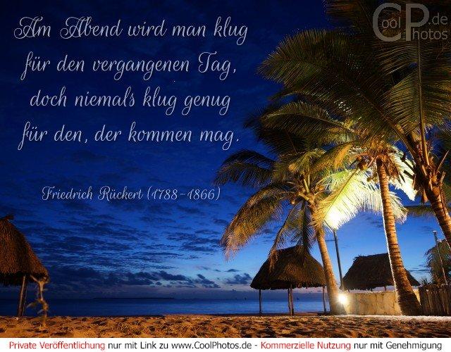 Am Abend wird man klug für den vergangenen Tag, doch niemals klug genug für den, der kommen mag. Friedrich Rückert (1788-1866)