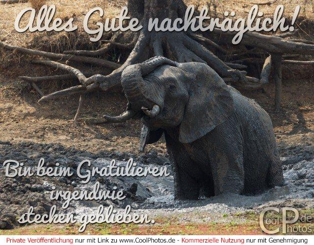 Text Zum Geburtstag Gratulieren Gratulieren Deutsch Geburtstag