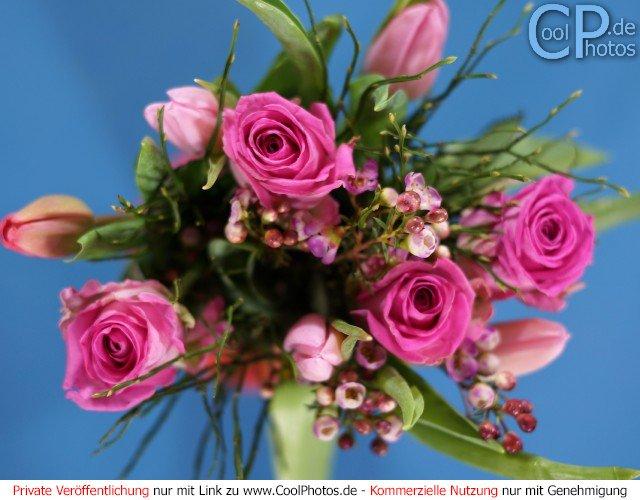 Blumenstrauß mit rosa Rosen und Tulpen
