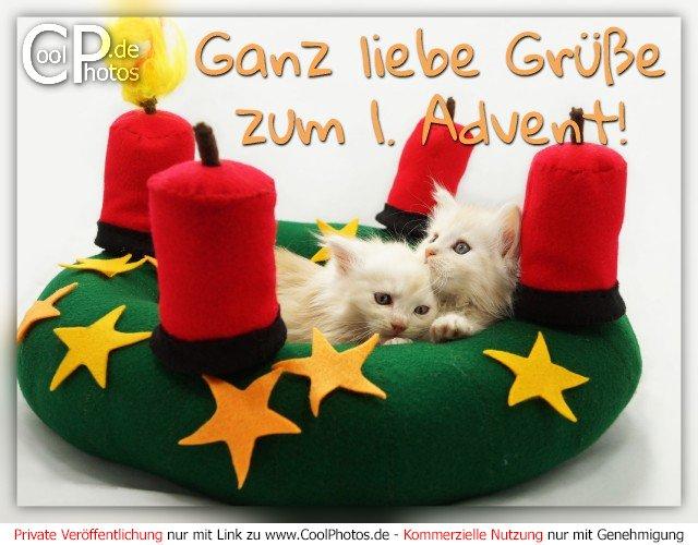 Liebe Grüße Zum 1. Advent