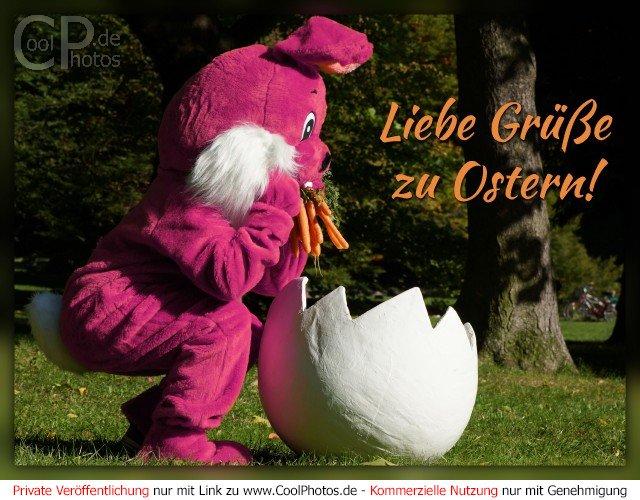 CoolPhotos.de - Lustige Osterkarten - Liebe Grüße zu Ostern!