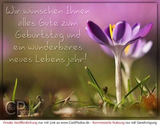 CoolPhotos.de - Wir wünschen Ihnen alles Gute zum Geburtstag und ein ...