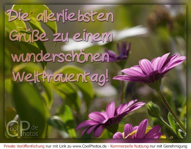 Wünsche Zum Weltfrauentag Schleswig 2019 08 05