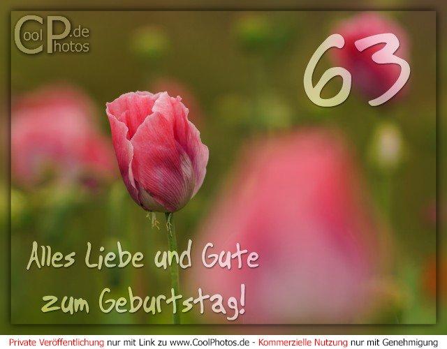 Coolphotosde Alles Liebe Und Gute Zum Geburtstag