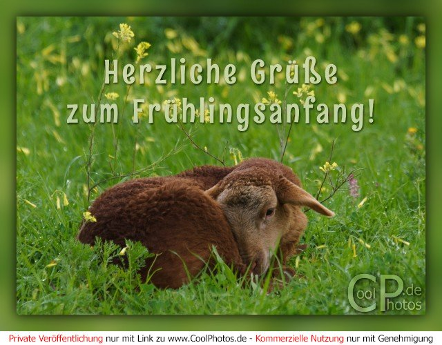 Herzliche Grüße zum Frühlingsanfang!  Dieses Motiv findet sich seit dem 20. März 2017 in der Kategorie Frühlingskarten.