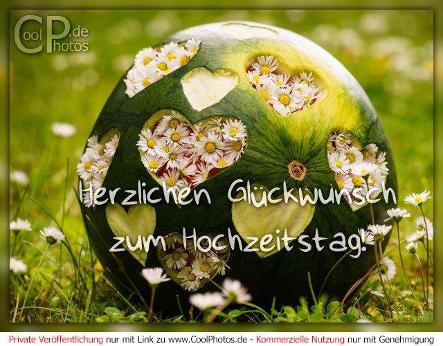 Gratulation Zum Hochzeitstag | Perfekt Gluckwunsche Zur Hochzeitstag Jz63 Startupjobsfa
