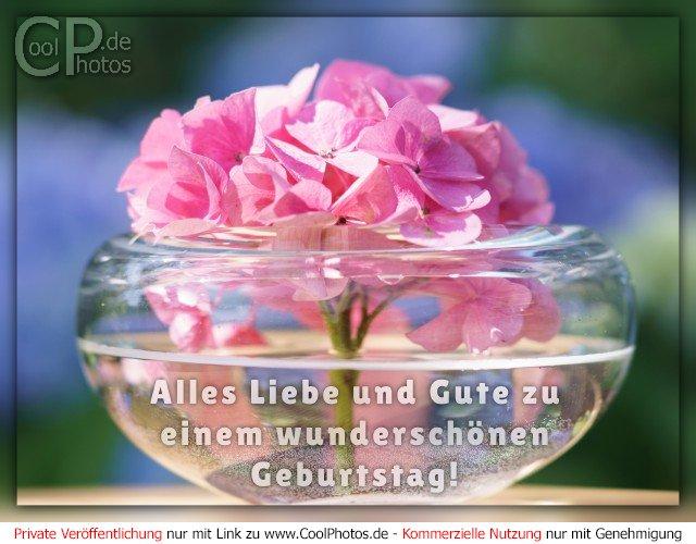 Alles Liebe und Gute zu einem wunderschönen Geburtstag!  Dieses Motiv ist am 15.02.2017 neu in die Kategorie Geburtstagskarten für Blumenliebhaber  aufgenommen worden.