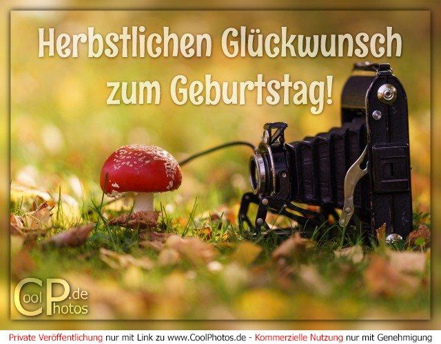 Coolphotosde Herbstlichen Glückwunsch Zum Geburtstag