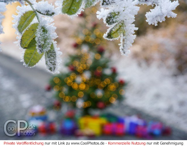 Hübsche Weihnachtsbilder.Coolphotos De Grußkarten Weihnachtsbilder