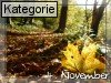 04. November (Vortag)