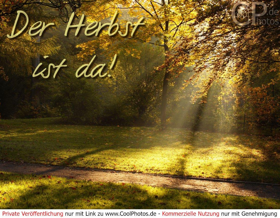 Bilder herbst kostenlos whatsapp Herbst samstag