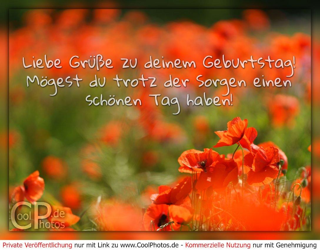 Verlag J P Peter Pc Leporello Herzliche Grusse Zum Geburtstag 372