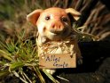Schwein mit dem Text: Alles Gute
