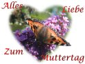 Schmetterling als Motiv einer Muttertagskarte
