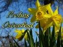 Frohes Osterfest    Aus der Kategorie Osterkarten