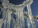Das schützende Eis glitzert im Sonnenlicht