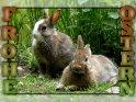Diese Frohe-Ostern-Grusskarte zieren zwei Kaninchen.