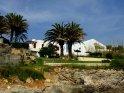 Weiße Häuser mit Palmen