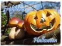 Fröhliches Halloween    Dieses Motiv findet sich seit dem 01. September 2003 in der Kategorie Halloweenkarten.