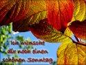 Herbstliche Grußkarte zum Sonntag mit dem Schriftzug  Ich wünsche dir noch einen schönen Sonntag