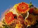 Rot-gelber Blumenstrauß