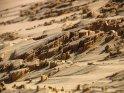 Diese interessanten Strukturen im Sand verdanken wir dem Wind.