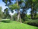 Im Englischen Garten in München