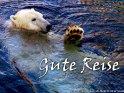 Der Eisbär wünscht eine Gute Reise