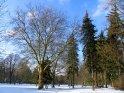 Wintereinbruch in den Schillerwiesen in Göttingen
