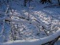 Verschneite Äste und Zweige am Boden
