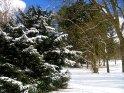 Dieses Motiv finden Sie seit dem 27. Februar 2005 in der Kategorie Schnee.