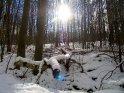 Dieses Motiv wurde am 27. Februar 2005 in die Kategorie Schnee eingefügt.