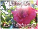 Liebesgrüße zum Valentinstag    Dieses Motiv befindet sich seit dem 06. Februar 2005 in der Kategorie Valentinstag.